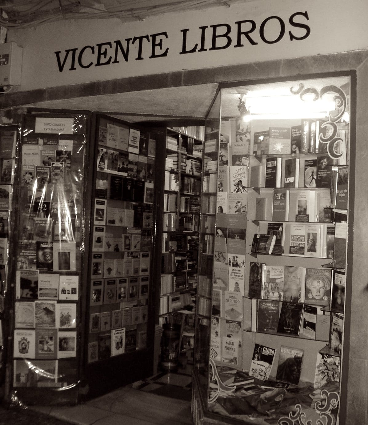 Librería Vicente en Pintores