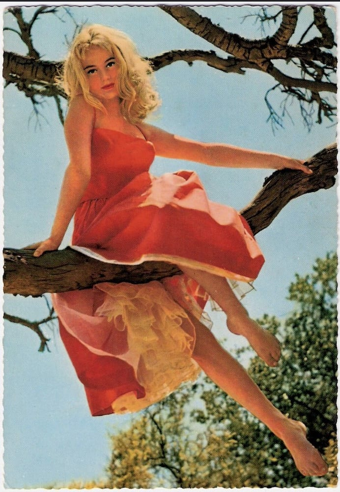 1960s - Tarjeta postal de Kruger - Yvette Mimieux